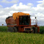Кредиты фермерам: ЕИБ может предоставить 400 млн евро