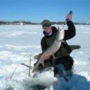 Лучшие прикормы для успешной рыбалки