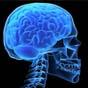 Мозговой имплант остановит насильников и самоубийц