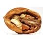 Грецкие орехи становятся самым прибыльным товаром украинского экспорта