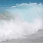 Графеновый фильтр в один шаг очистил воду из Сиднейской бухты