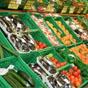 Новые правила проверки продуктов: когда, кто, какие штрафы
