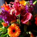 Цветы от разных производителей