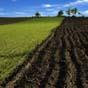 Треть общин уже получили сельхозземли от правительства