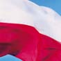 Украинцы в Польше зарабатывают столько же, как и поляки (исследование)