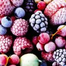Закупка сырья и продажа фруктов и овощей для глубокой заморозки