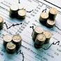 Госдолг с начала года вырос на 46 млрд грн — Счетная палата