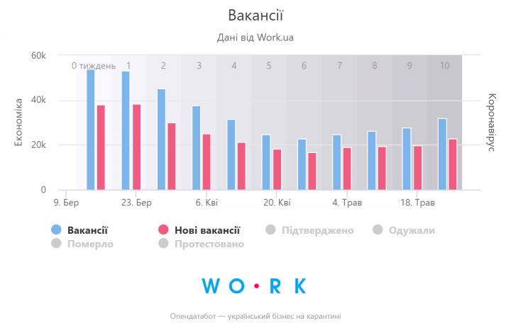 Рынок вакансий: выход из каратина (инфографика)