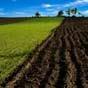 Почти 1 млн га с/х земель госорганов предлагают отдать в аренду