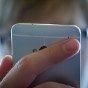 Эксперты назвали приложения, собирающие больше всего личных данных через смартфон